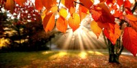 Top 5 spelletjes voor de herfst van 2013