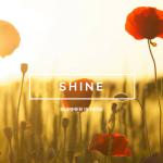 Shine it is summer