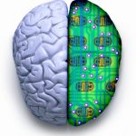 """Computer brain"" versus ""human brain"""